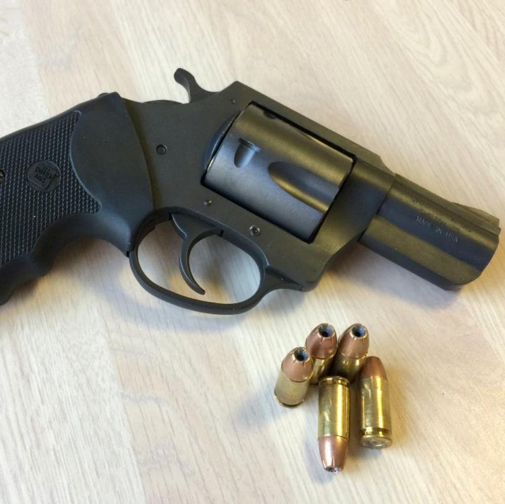 Charter Arms Pitbull 9mm Revolver - RevolverGuy Com